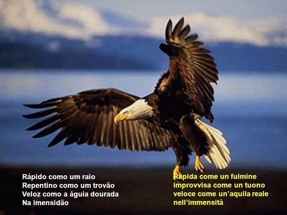 che il vento soffia e la pioggia scende; le nuvole passano e tu con le ali aperte con forza e coraggio vai verso la pace Que o vento sopra e a chuva c