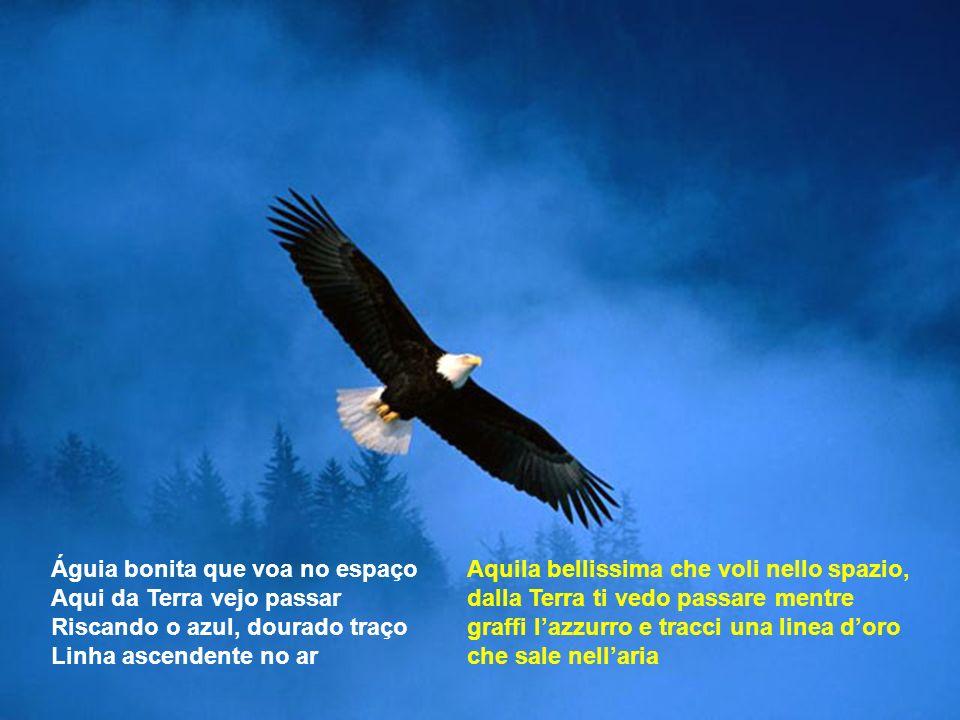Aquila bellissima che voli nello spazio, dalla Terra ti vedo passare mentre graffi lazzurro e tracci una linea doro che sale nellaria Águia bonita que voa no espaço Aqui da Terra vejo passar Riscando o azul, dourado traço Linha ascendente no ar