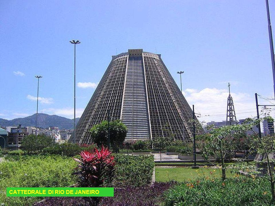 CATTEDRALE DI RIO DE JANEIRO