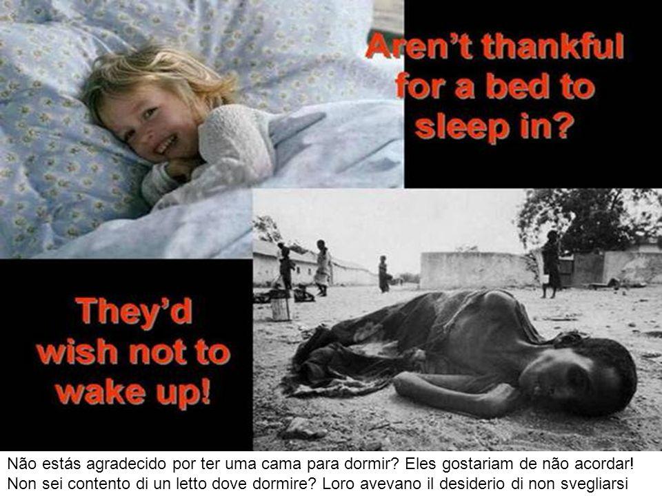 Não estás agradecido por ter uma cama para dormir? Eles gostariam de não acordar! Non sei contento di un letto dove dormire? Loro avevano il desiderio