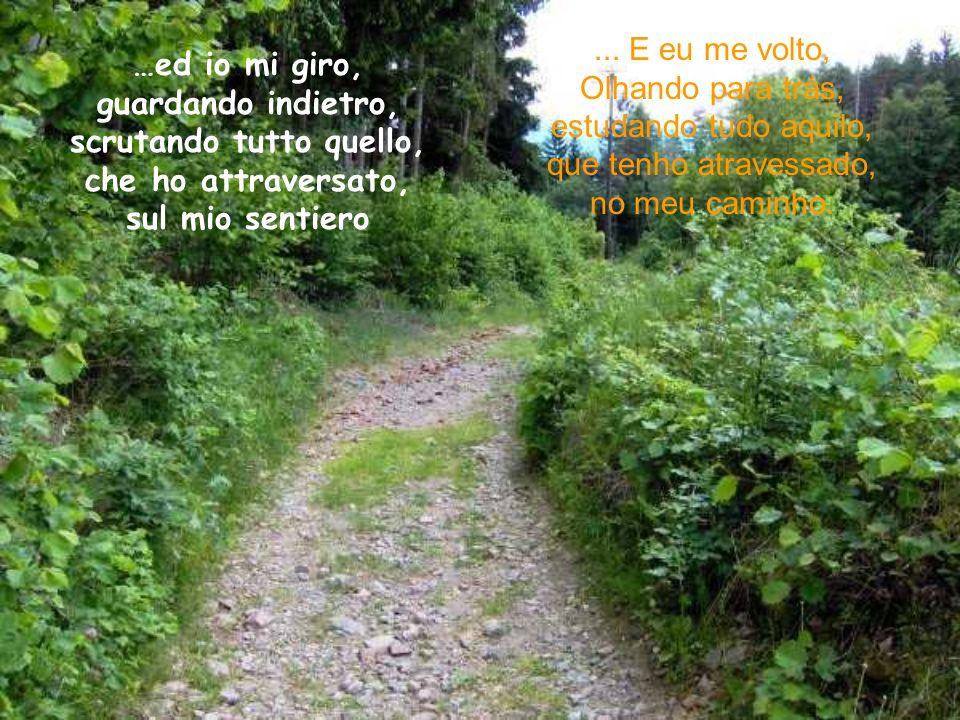Un piccolo sentiero …supera monti e vallate, senza frenate, e senza fermarsi mai… Uma pequena trilha...