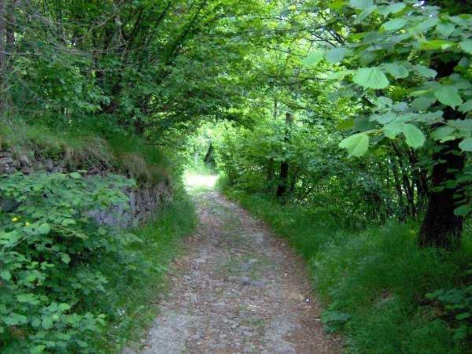 Il sentiero, un posto meraviglioso che nasconde tante belle sorprese.