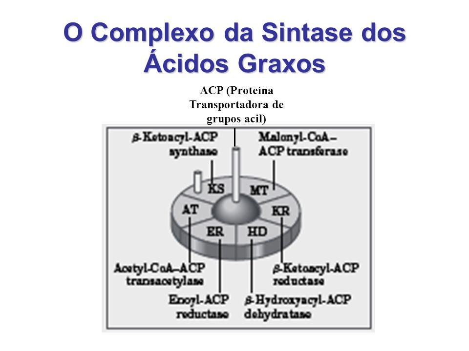 As Reações do Complexo da Ácido Graxo Sintase Passo 1:Passo 1: condensação –Condensação do grupos ativados acetil e malonil, formação do acetoacetil-ACP e liberação de uma molécula de CO 2.