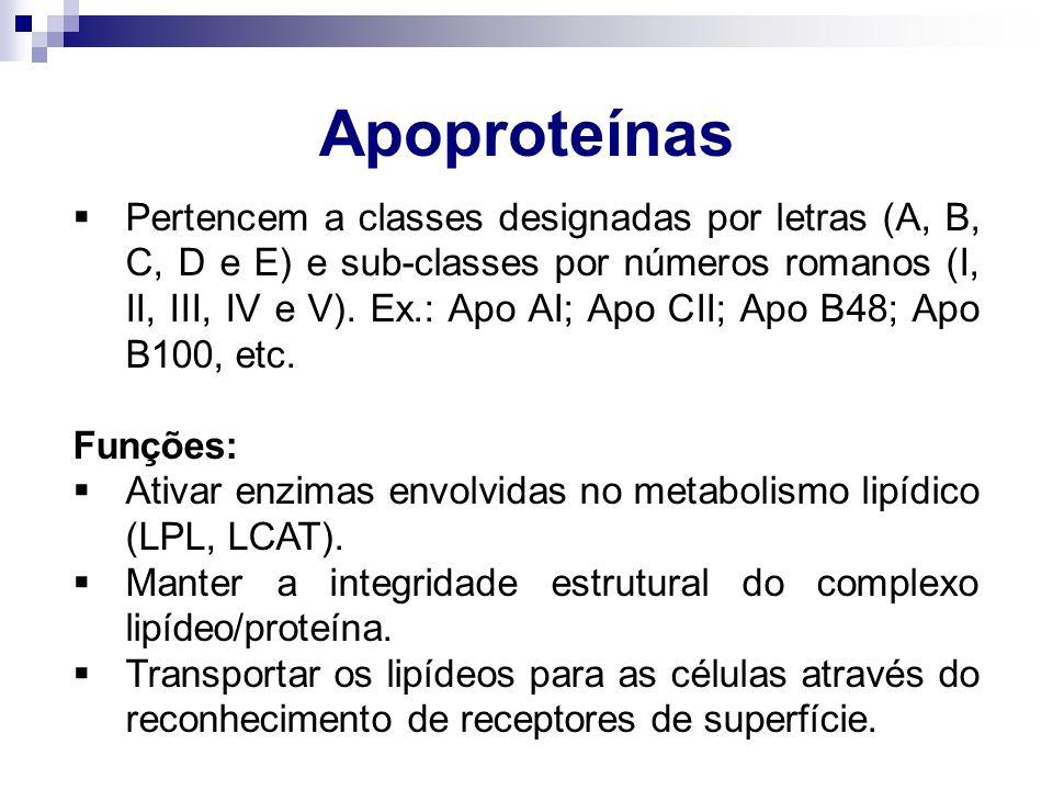 Apoproteínas  Pertencem a classes designadas por letras (A, B, C, D e E) e sub-classes por números romanos (I, II, III, IV e V). Ex.: Apo AI; Apo CII