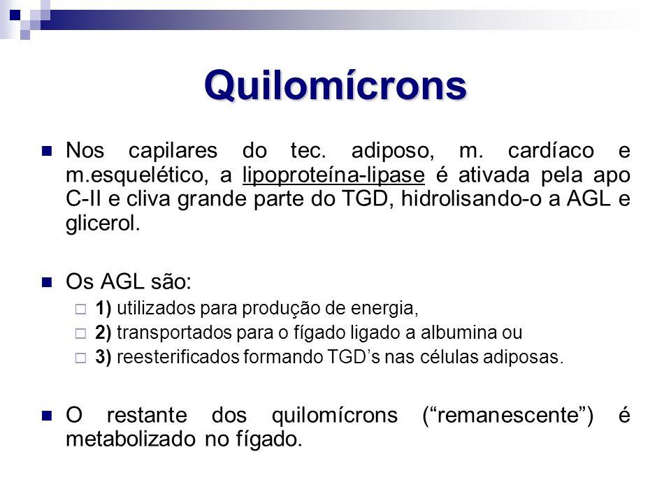 Quilomícrons Nos capilares do tec. adiposo, m. cardíaco e m.esquelético, a lipoproteína-lipase é ativada pela apo C-II e cliva grande parte do TGD, hi
