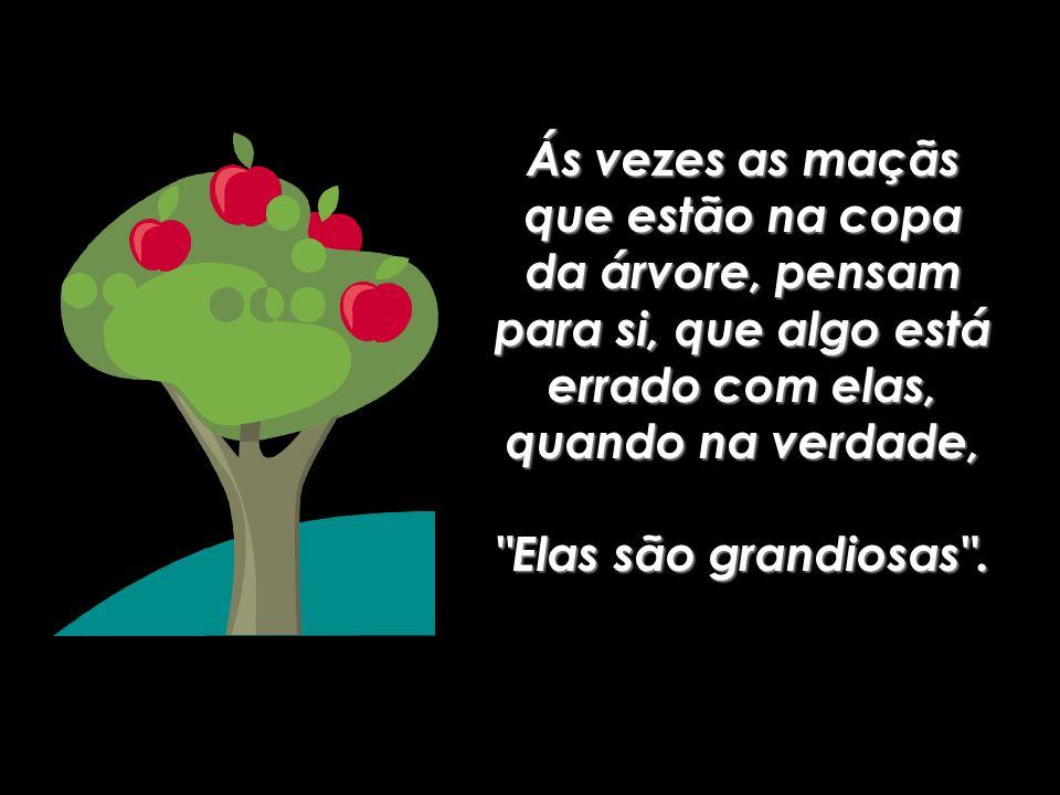 Ao invés disto, pegam as maçãs podres, que estão caídas na chão e que por não serem tão boas, são fáceis de se conseguir.