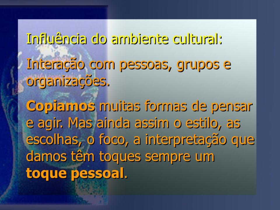 Influência do ambiente cultural: Interação com pessoas, grupos e organizações.
