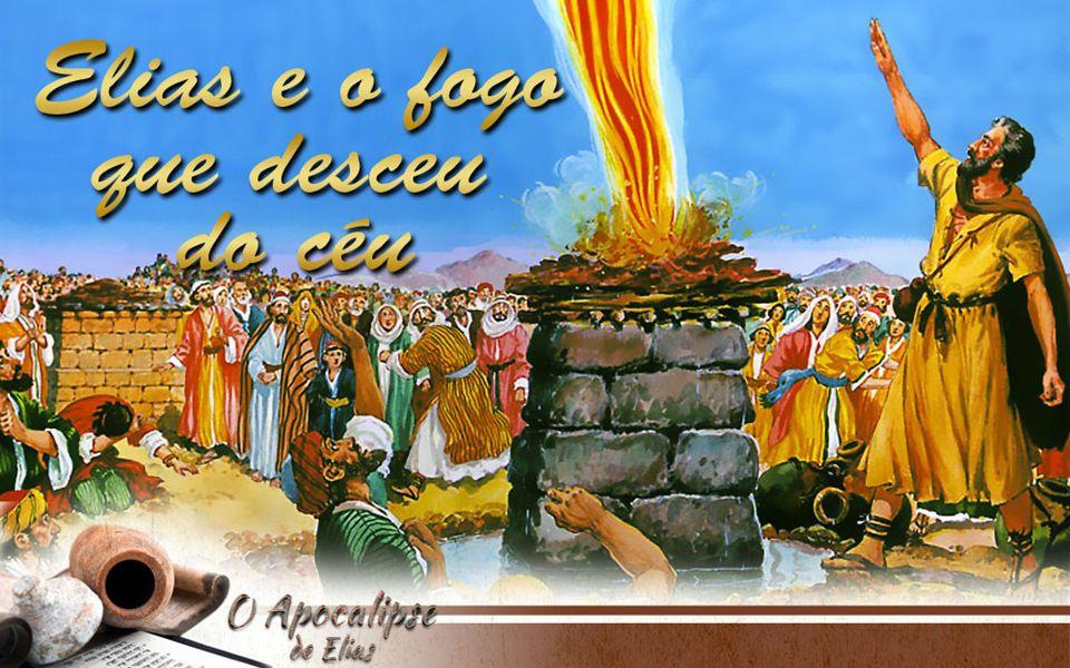 Então caiu fogo do Senhor, e consumiu o holocausto, e a lenha, e as pedras, e o pó, e ainda lambeu a água que estava no rego.