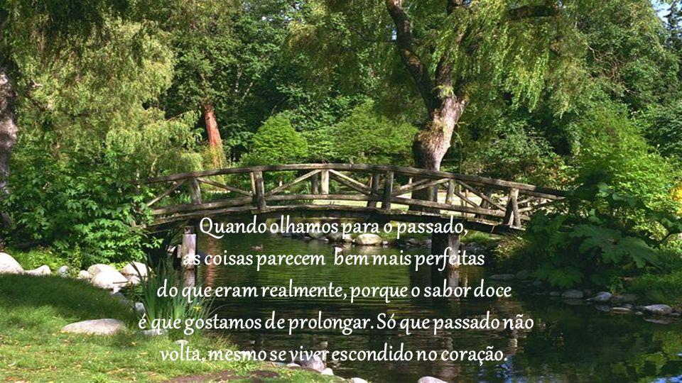 É quando as árvores perdem suas folhas e aparecem feias e abandonadas, que se preparam para algo novo. Sonhos chegam e sonhos se vão, mas as raízes co