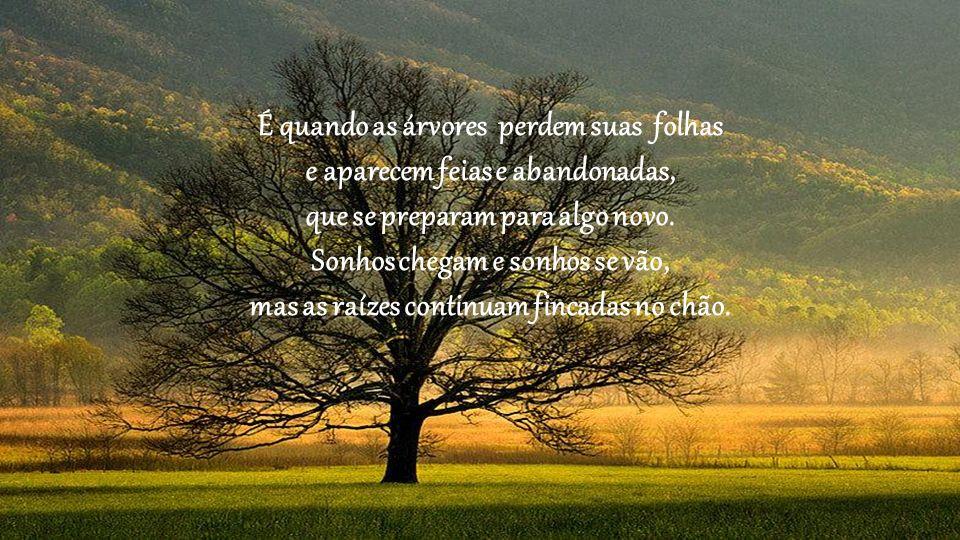 É quando as árvores perdem suas folhas e aparecem feias e abandonadas, que se preparam para algo novo.