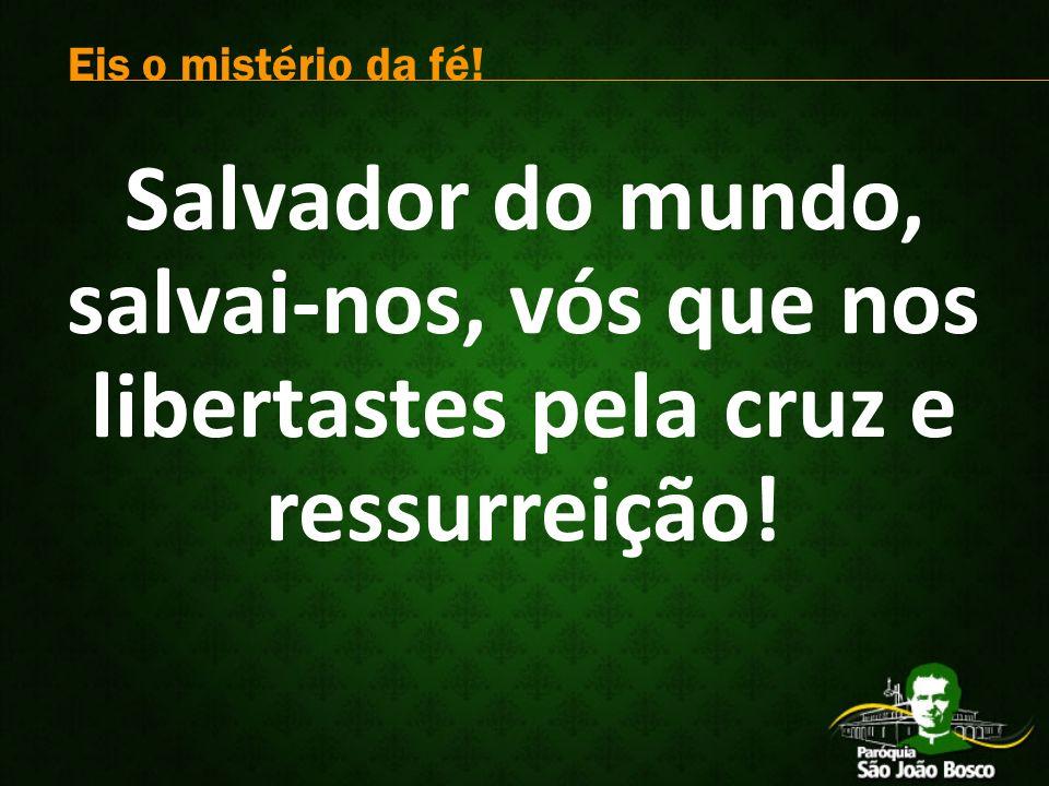 Salvador do mundo, salvai-nos, vós que nos libertastes pela cruz e ressurreição.