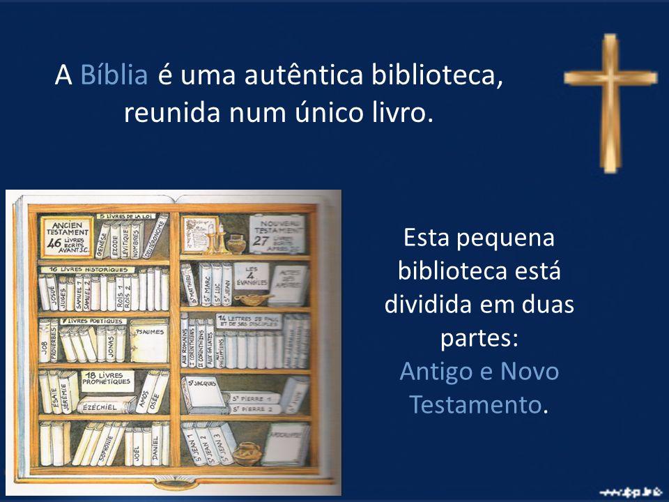 A Bíblia é uma autêntica biblioteca, reunida num único livro. Esta pequena biblioteca está dividida em duas partes: Antigo e Novo Testamento.