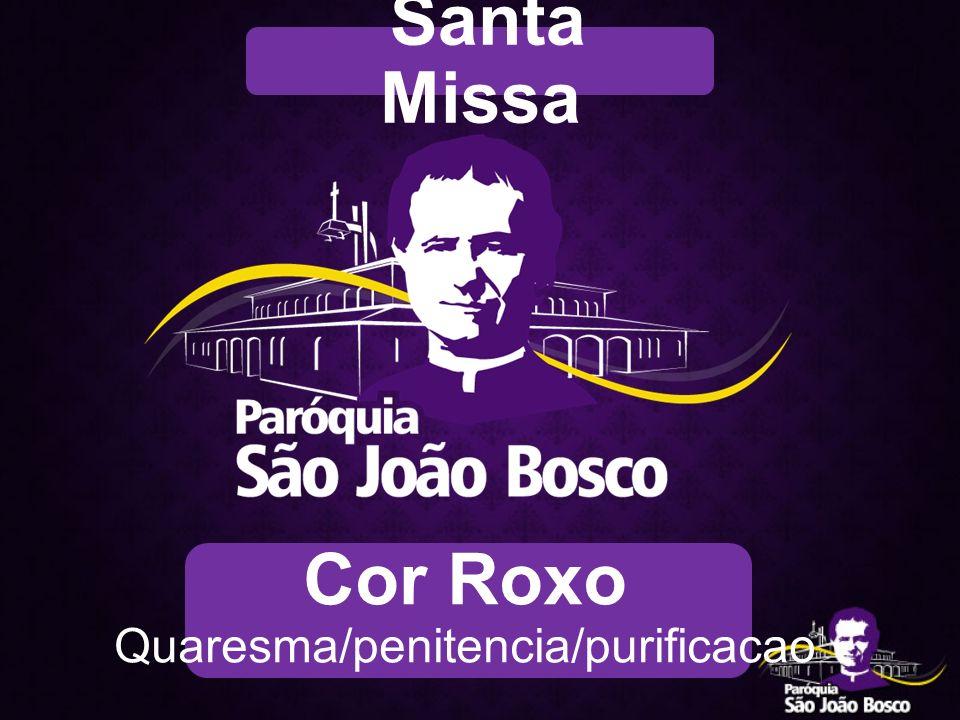 Cor Roxo Quaresma/penitencia/purificacao Santa Missa