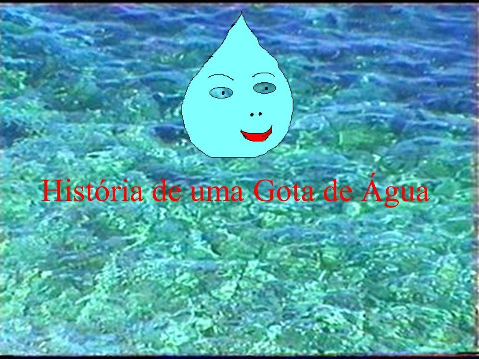 O Ciclo da Água Trabalho realizado por: Ana Sofia Espírito Santo