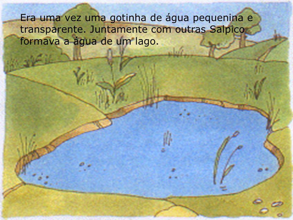 A água é um líquido abundante na natureza. Não apresenta sempre o mesmo aspecto.