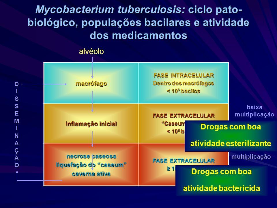 Resultado de imagem para Cultura para micobactéria com identificação de espécie tb