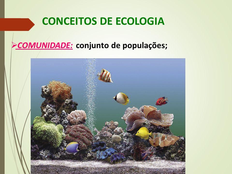 CONCEITOS DE ECOLOGIA  COMUNIDADE: conjunto de populações;