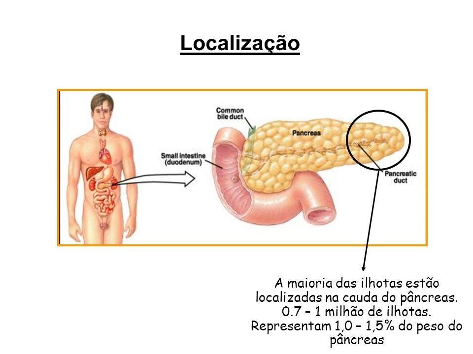 Tipo celularPorcentagem (volume da ilhota) Produto  20-25%Glucagon  60-70%Insulina  3-5%Somatostatina Célula PP< 2%Polipeptídeo pancreático insulina J Clin Endocrinol Metab 41:841, 1975 A B C