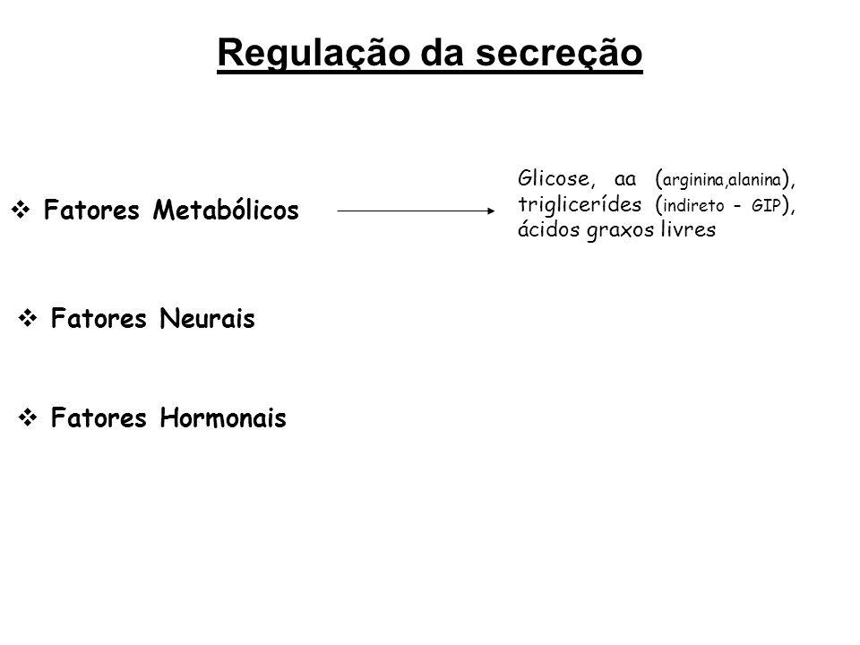 Glucagon Local de Ação Fígado  Degradação de reservas energéticas Glicogênio  Glicogenólise  Neoglicogênese  Glicólise  Corpos cetônicos Tecido Adiposo Lipólise (+ LHS) -  fluxo de AGL.
