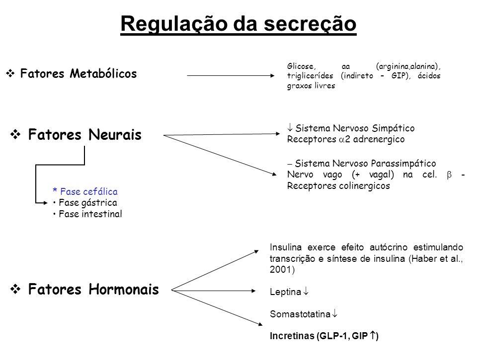 DESAFIO A administração de glicose por via endovenosa é menos potente em estimular a secreção de insulina do que a glicose oral.