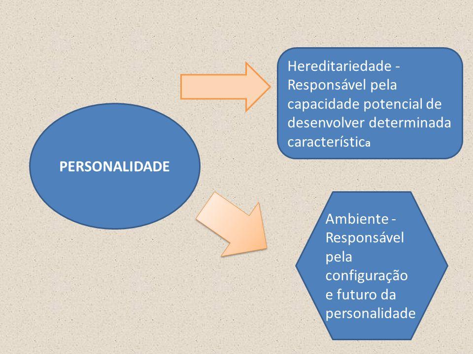 PERSONALIDADE Hereditariedade - Responsável pela capacidade potencial de desenvolver determinada característic a Ambiente - Responsável pela configuração e futuro da personalidade