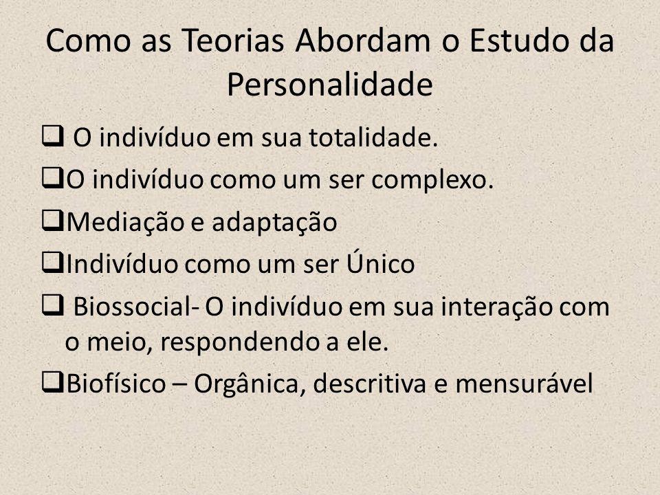 Como as Teorias Abordam o Estudo da Personalidade  O indivíduo em sua totalidade.