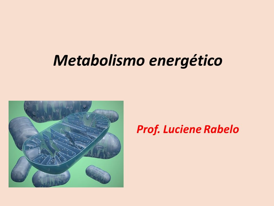 Metabolismo energético Prof. Luciene Rabelo