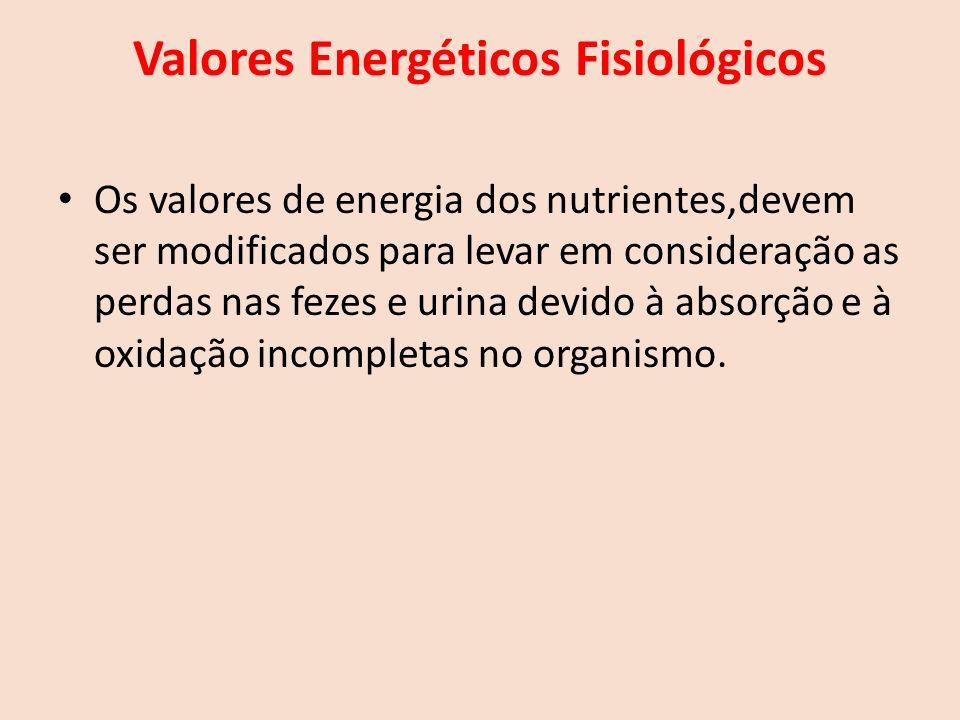 Valores Energéticos Fisiológicos Os valores de energia dos nutrientes,devem ser modificados para levar em consideração as perdas nas fezes e urina devido à absorção e à oxidação incompletas no organismo.
