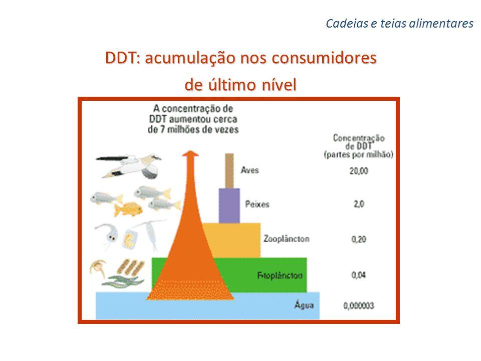 DDT: acumulação nos consumidores de último nível Cadeias e teias alimentares