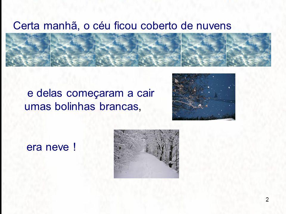 2 Certa manhã, o céu ficou coberto de nuvens e delas começaram a cair umas bolinhas brancas, era neve !