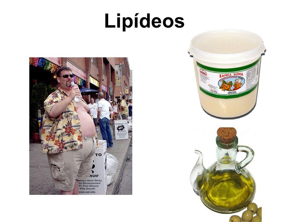 A hidrólise dos Triacilgliceróis: Estado de jejum - Quem capta os ácidos graxos?