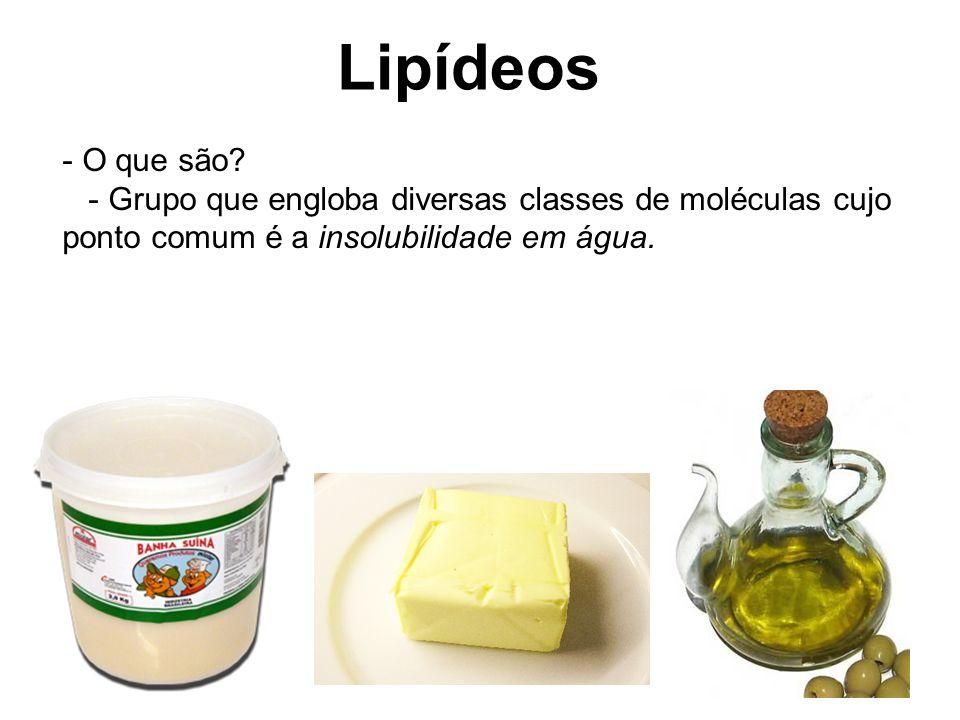 Lipídeos - Diversas classes: - Triglicerídeos - Fosfolipídeos - Glicolipídeos - Esfingolipídeos - Esteróis