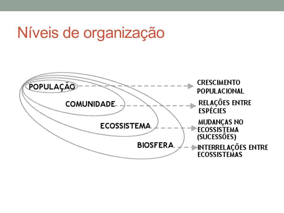 Níveis Tróficos São as etapas, ou níveis, da cadeia alimentar.