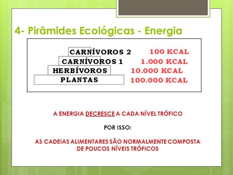 4- Pirâmides Ecológicas - Energia A ENERGIA DECRESCE A CADA NÍVEL TRÓFICO POR ISSO: AS CADEIAS ALIMENTARES SÃO NORMALMENTE COMPOSTA DE POUCOS NÍVEIS TRÓFICOS