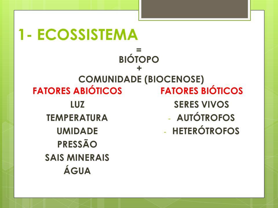 1- ECOSSISTEMA = BIÓTOPO + COMUNIDADE (BIOCENOSE) FATORES ABIÓTICOS LUZ TEMPERATURA UMIDADE PRESSÃO SAIS MINERAIS ÁGUA FATORES BIÓTICOS SERES VIVOS - AUTÓTROFOS - HETERÓTROFOS