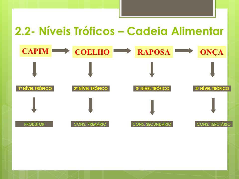 CAPIM COELHORAPOSAONÇA 2º NÍVEL TRÓFICO3º NÍVEL TRÓFICO4º NÍVEL TRÓFICO1º NÍVEL TRÓFICO CONS. PRIMÁRIO CONS. SECUNDÁRIO CONS. TERCIÁRIO PRODUTOR 2.2-
