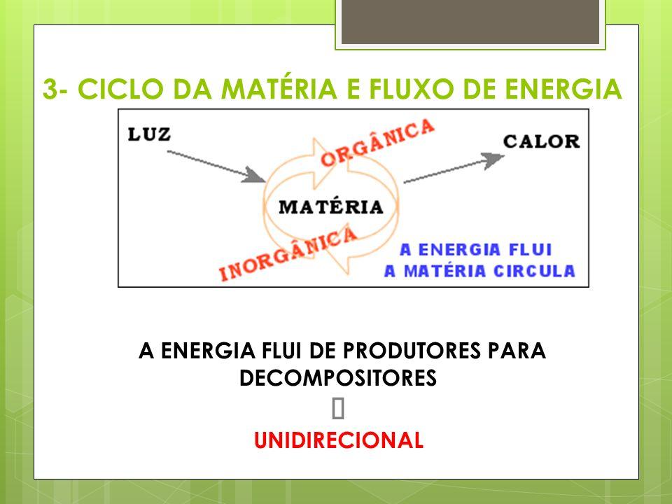 3- CICLO DA MATÉRIA E FLUXO DE ENERGIA A ENERGIA FLUI DE PRODUTORES PARA DECOMPOSITORES  UNIDIRECIONAL