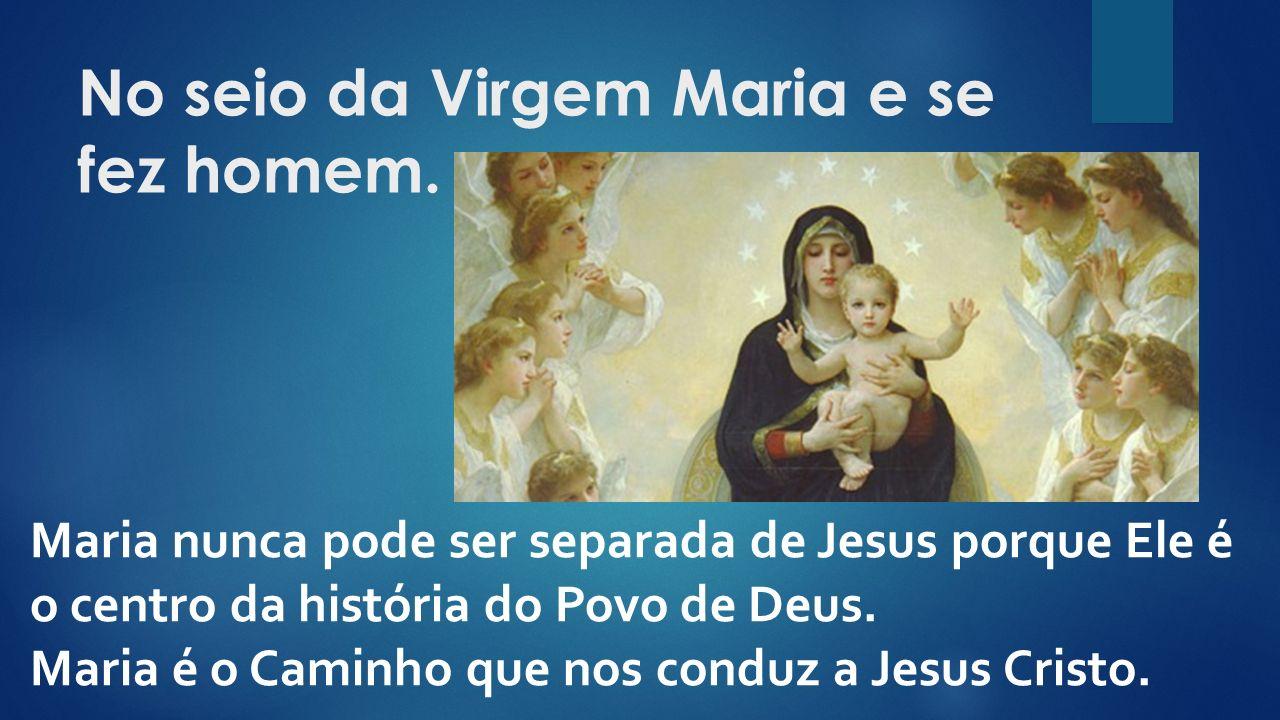 No seio da Virgem Maria e se fez homem.