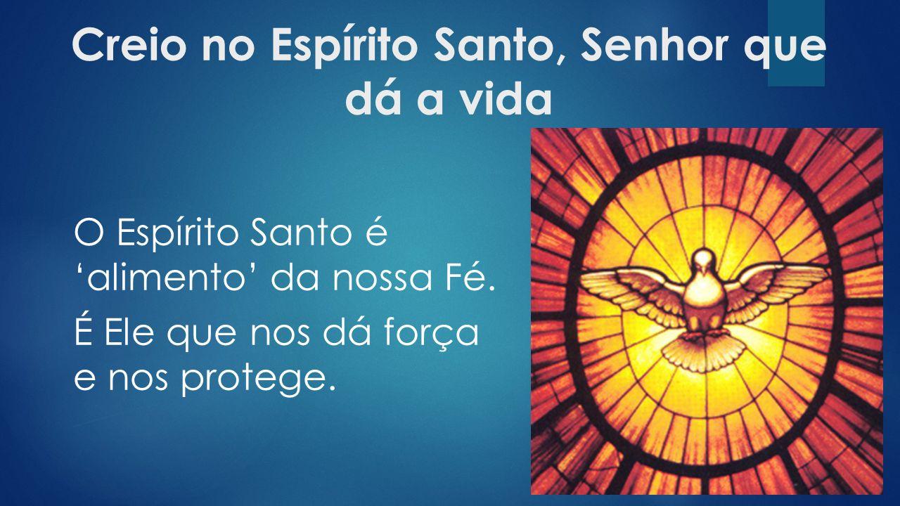 Creio no Espírito Santo, Senhor que dá a vida O Espírito Santo é 'alimento' da nossa Fé.