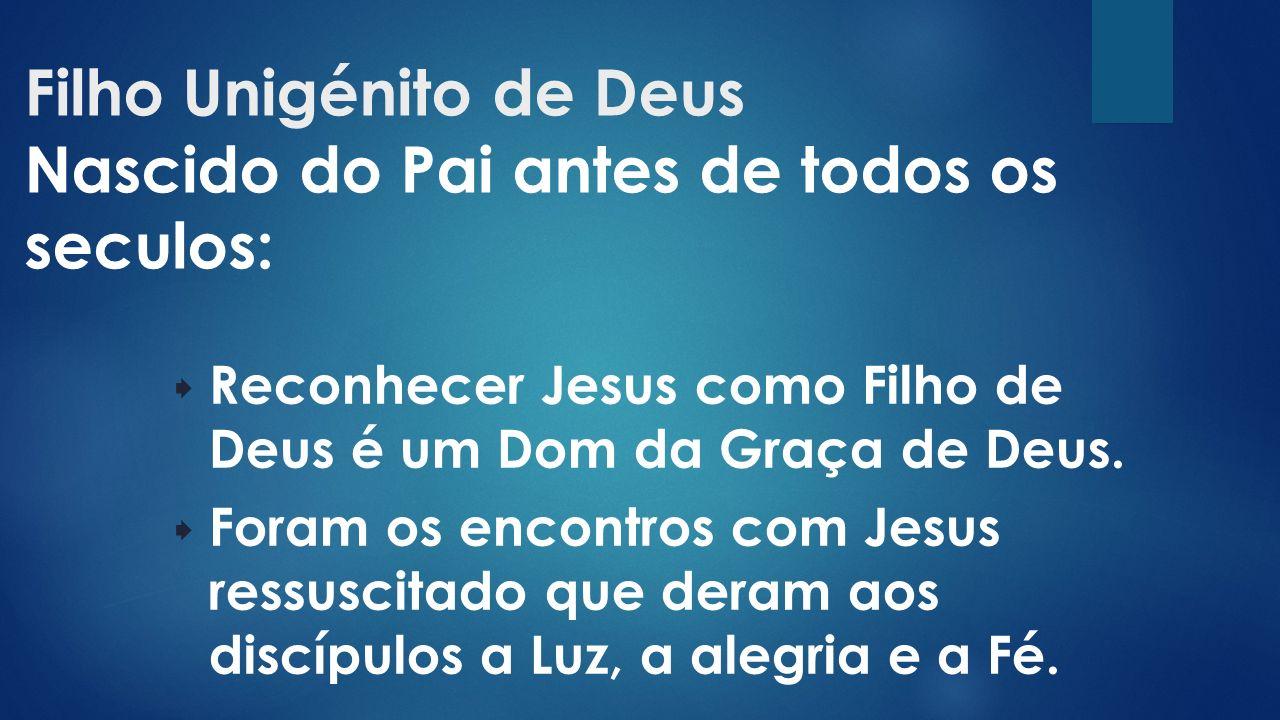 Filho Unigénito de Deus Nascido do Pai antes de todos os seculos:  Reconhecer Jesus como Filho de Deus é um Dom da Graça de Deus.