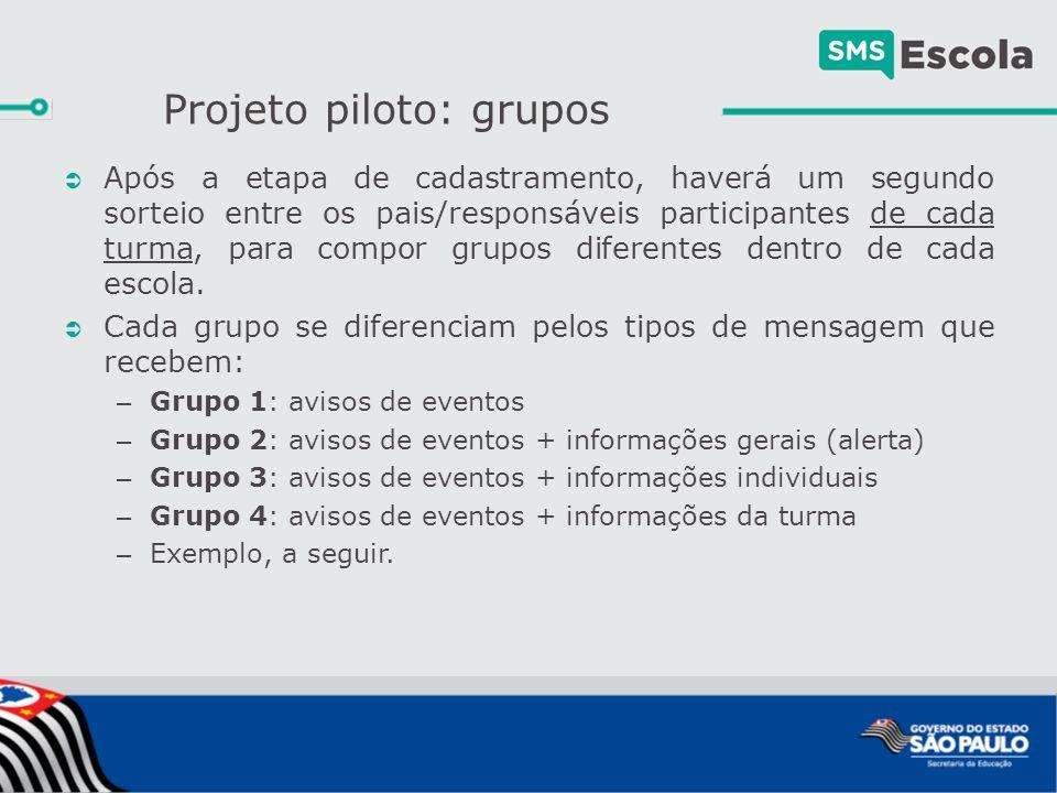 Projeto piloto: grupos  Após a etapa de cadastramento, haverá um segundo sorteio entre os pais/responsáveis participantes de cada turma, para compor grupos diferentes dentro de cada escola.