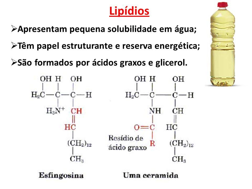 Lipídios  Apresentam pequena solubilidade em água;  Têm papel estruturante e reserva energética;  São formados por ácidos graxos e glicerol.