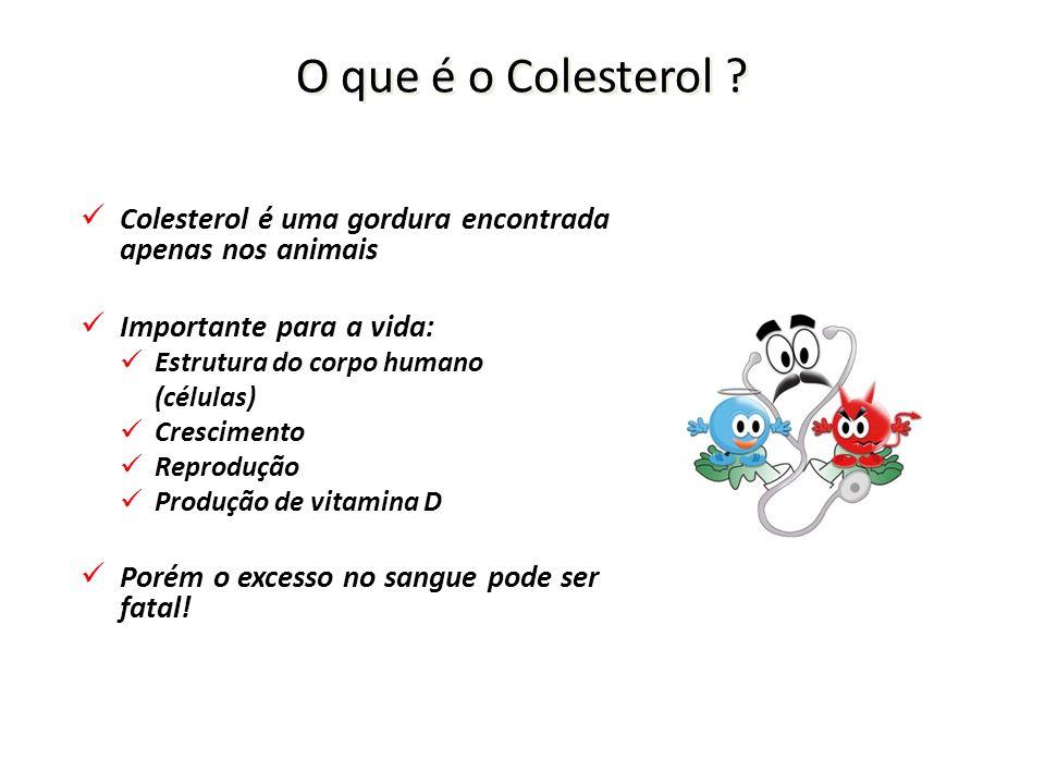 O que é o Colesterol .