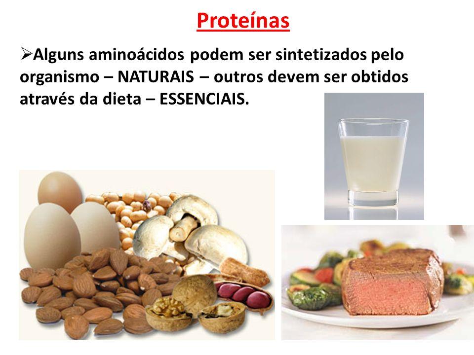 Proteínas  Alguns aminoácidos podem ser sintetizados pelo organismo – NATURAIS – outros devem ser obtidos através da dieta – ESSENCIAIS.