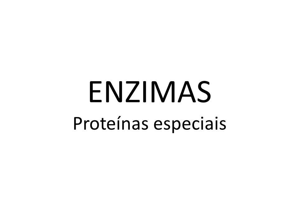 ENZIMAS Proteínas especiais