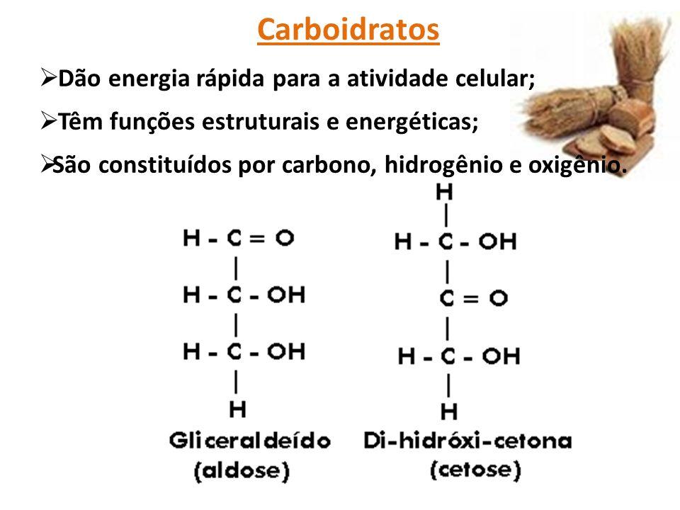 Carboidratos  Dão energia rápida para a atividade celular;  Têm funções estruturais e energéticas;  São constituídos por carbono, hidrogênio e oxigênio.