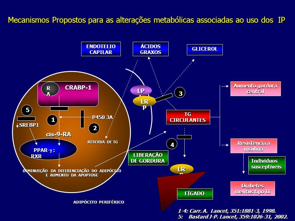 Mecanismos Propostos para as alterações metabólicas associadas ao uso dos IP PPAR-  : RXR PPAR-  : RXR CRABP-1 CRABP-1 RARARARA 1 TGCIRCULANTES LR P 4 Aumento gordura central Resistência à insulina Indivíduos susceptíveis Diabetes melitus tipo II LP L ENDOTELIO CAPILAR ÁCIDOS GRAXOS GLICEROL FÍGADO LIBERAÇÃO DE GORDURA P450 3A P450 3A cis-9-RA cis-9-RA ADIPÓCITO PERIFÉRICO RESERVA DE TG DIMINUIÇÃO DA DIFERENCIAÇÃO DO ADIPÓCITO E AUMENTO DA APOPTOSE LR P 3 2 1-4: Carr.