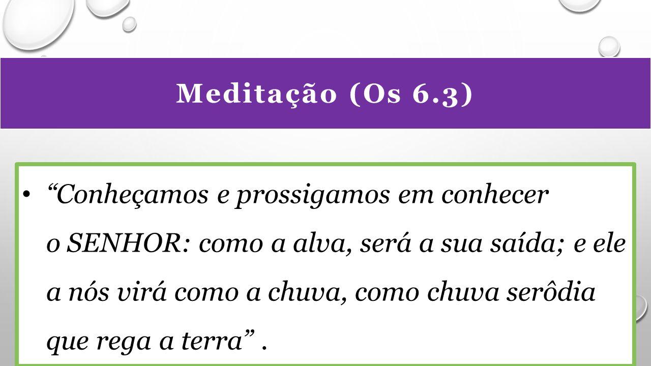 Meditação (Os 6.3) Conheçamos e prossigamos em conhecer o SENHOR: como a alva, será a sua saída; e ele a nós virá como a chuva, como chuva serôdia que rega a terra .