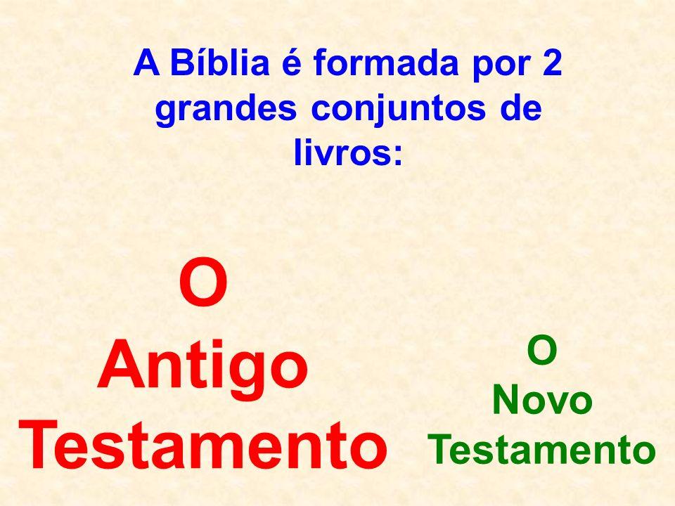 A Bíblia é formada por 2 grandes conjuntos de livros: O Antigo Testamento O Novo Testamento