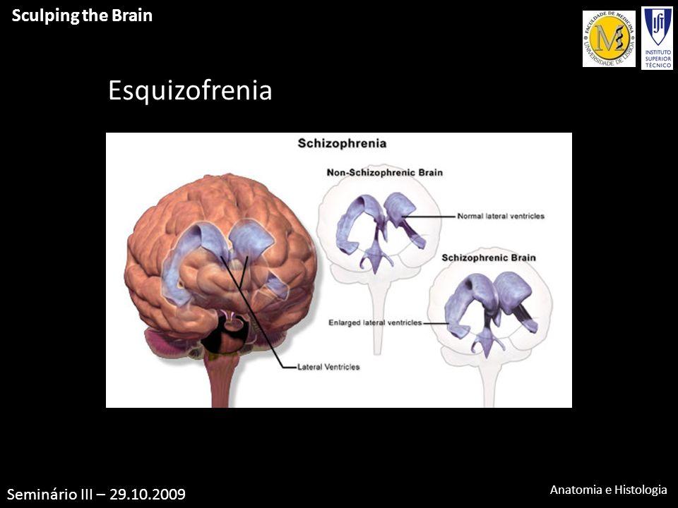 Vistoso Anatomía De La Esquizofrenia Molde - Imágenes de Anatomía ...